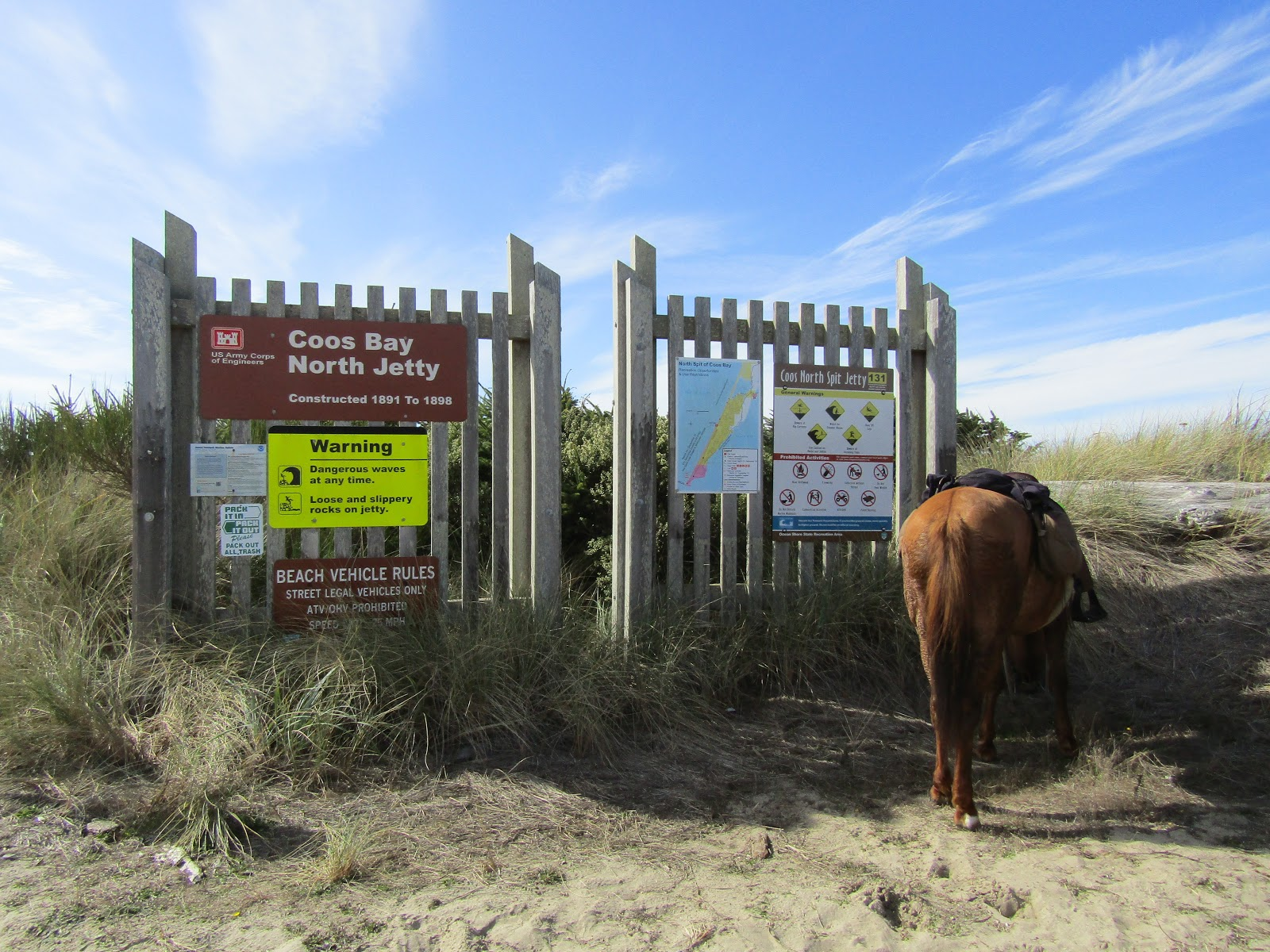 Holly's Horse Tales and Trails: Wild Mare Horse Camp, and ...