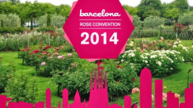 """Roses in the Sun"" Barcelona Rose Convention 2014"