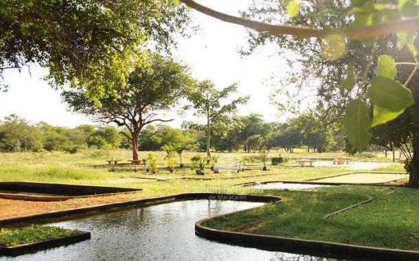 El jardín botánico de Maracaibo