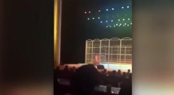 Tigre ataca en circo en China (VIDEO)