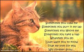 quotes cat sometimes you claw me sometimes you putt in mt lap