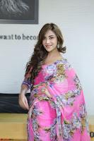 Angela Krislinzki Rogue Movie Fame Telugu Actress in Saree Backless Choli 081.JPG