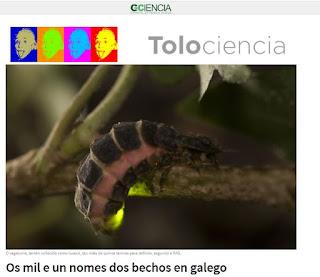http://www.gciencia.com/tolociencia/os-mil-e-un-nomes-dos-bechos-en-galego/