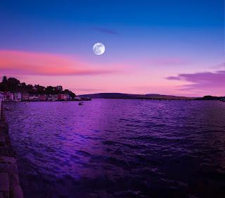 beach purple sky