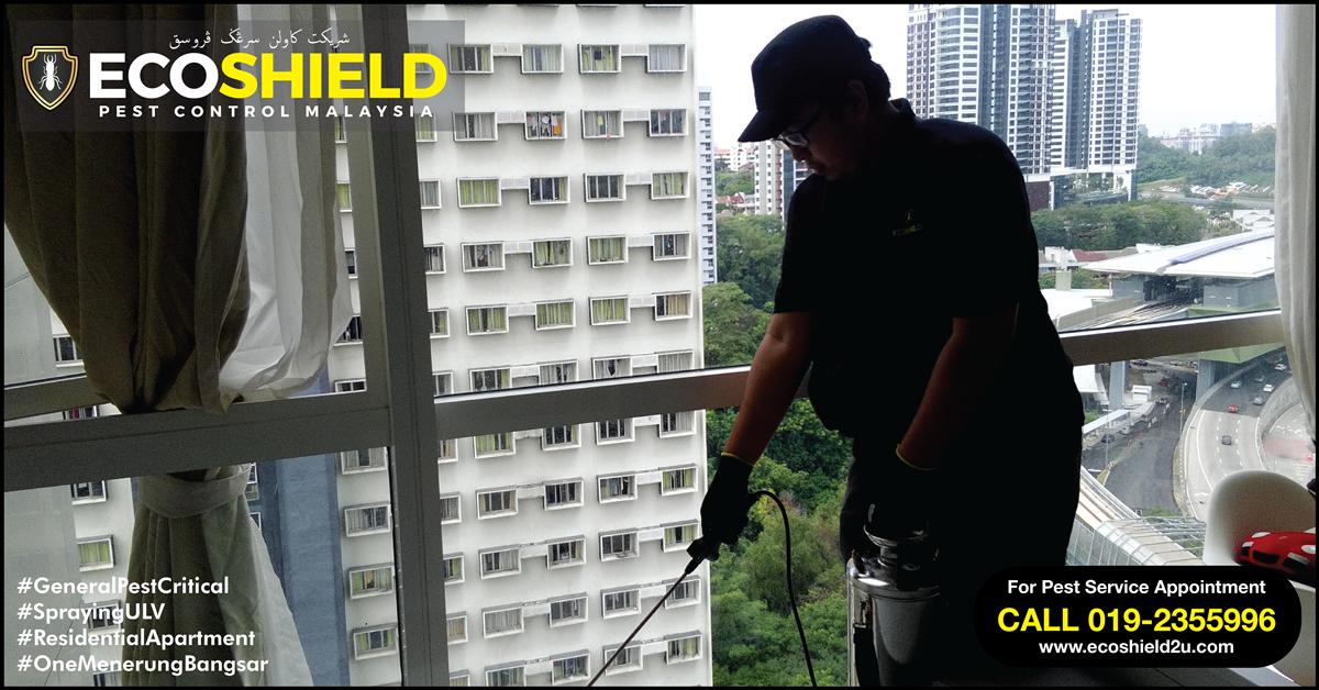 General Pest : Pest Control Selangor Malaysia