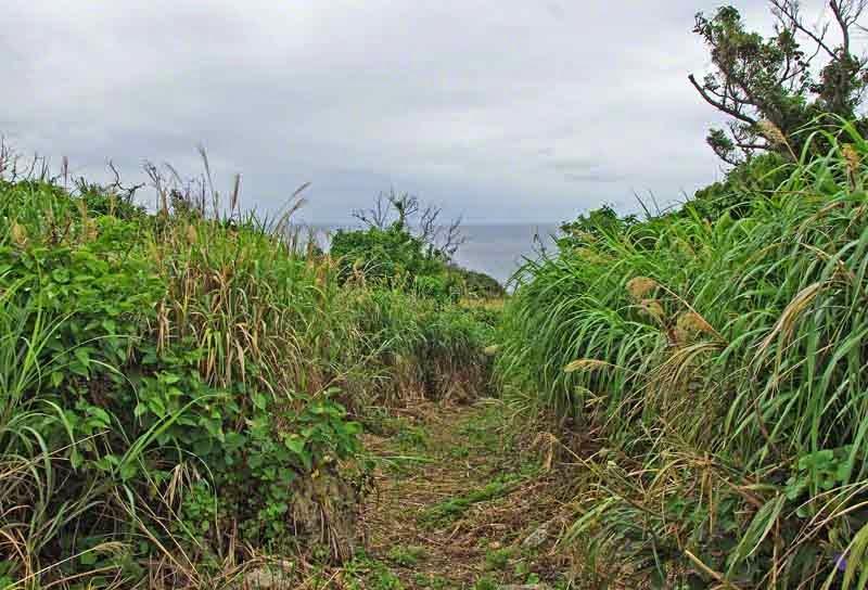 trail overlooking ocean,Kouri Jima