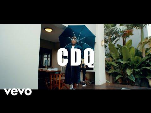 [VIDEO]: CDQ - FLEX