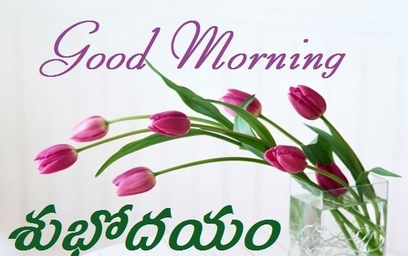 Good morning images flowers latest