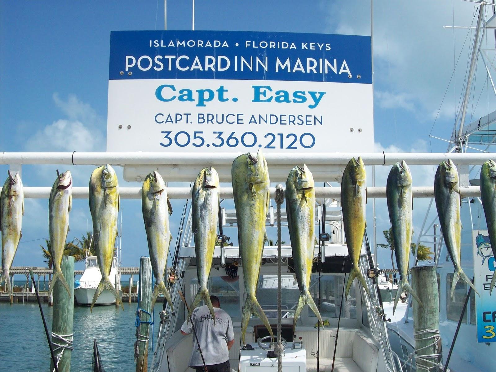 Postcard Inn Resort Marina At Holiday Isle Captain 39 S Fishing Report At The Beautiful Postcard