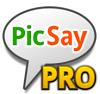 PicSay Pro Logo
