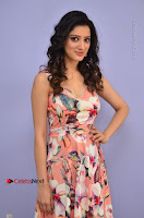 Actress Richa Panai Pos in Sleeveless Floral Long Dress at Rakshaka Batudu Movie Pre Release Function  0034.JPG