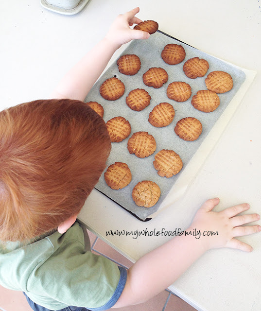 Salted peanut butter honey cookies - gluten-free, dairy-free, refined sugar-free - from www.mywholefoodfamily.com