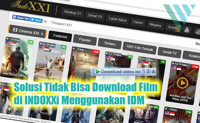 Solusi IDM Yang Tidak Bisa Download Film di Indoxxi