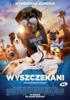 https://www.filmweb.pl/film/Wyszczekani-2018-788640