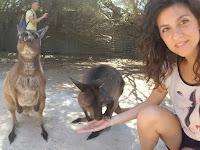 la_sciarpa_viola, claudia_magro, selfie, style, closet, shooting, models, fashion, travelblog, cangaroo, australia, canguri