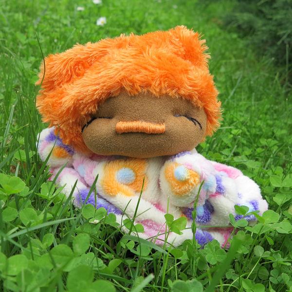 marchewka w trawie