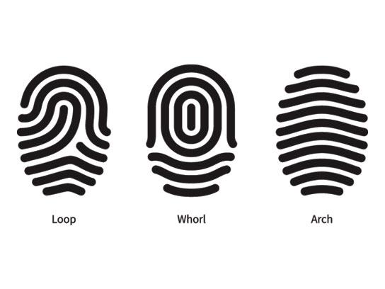 Fingerprints reveal: High blood pressure