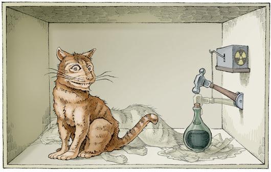 Schr%25C3%25B6dingers-Cat-3.jpg