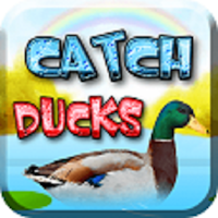 Catch Duck Game