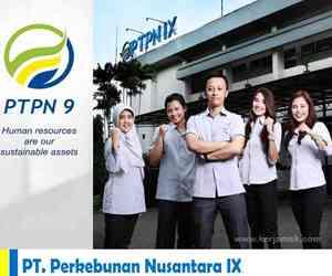 Lowongan Kerja di PT Perkebunan Nusantara IX