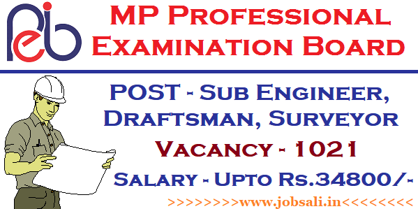 MP VYAPAM Sub Engineer Recruitment 2017, MP VYAPAM vacancies, MP online vyapam