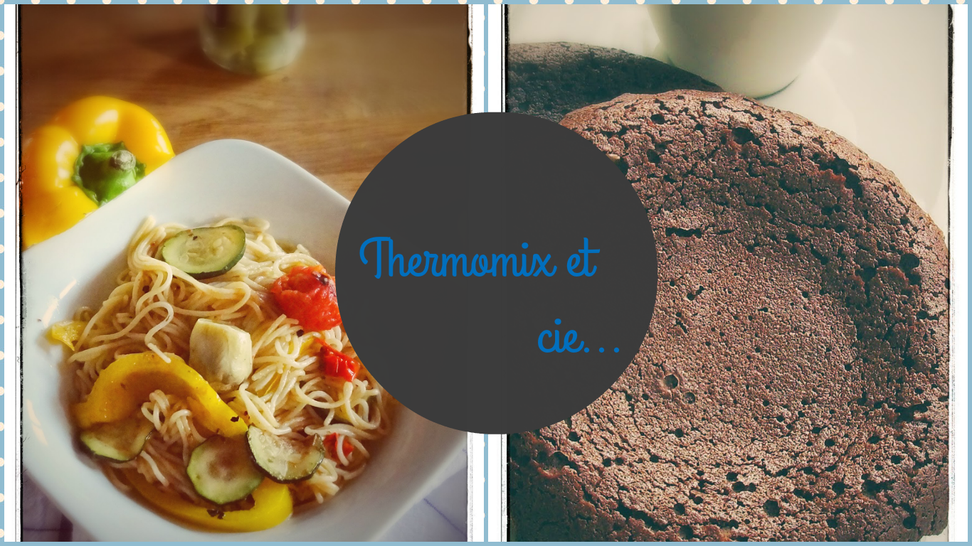 ~~ Thermomix & cie.... ~~