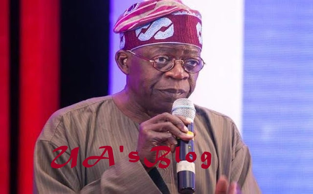 Tinubu Bans APC Chairman, Others From Seeking Re-election In Lagos