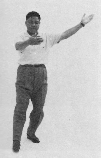 Tai Chi Chuan (Square Form) 7. Raise Hands And Step Up