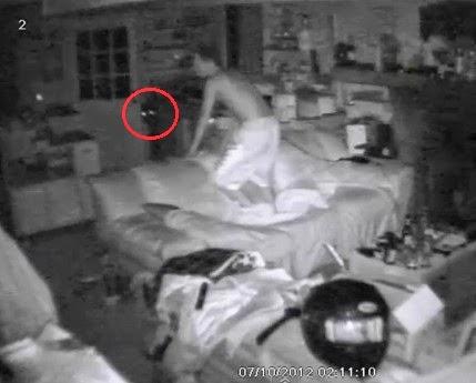 Watch: Bear Breaks Into House!   Bigfoot Research News