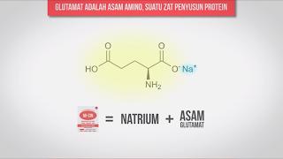 Kandungan Yang Ada Di Dalam Monosodium Glutamat Garam