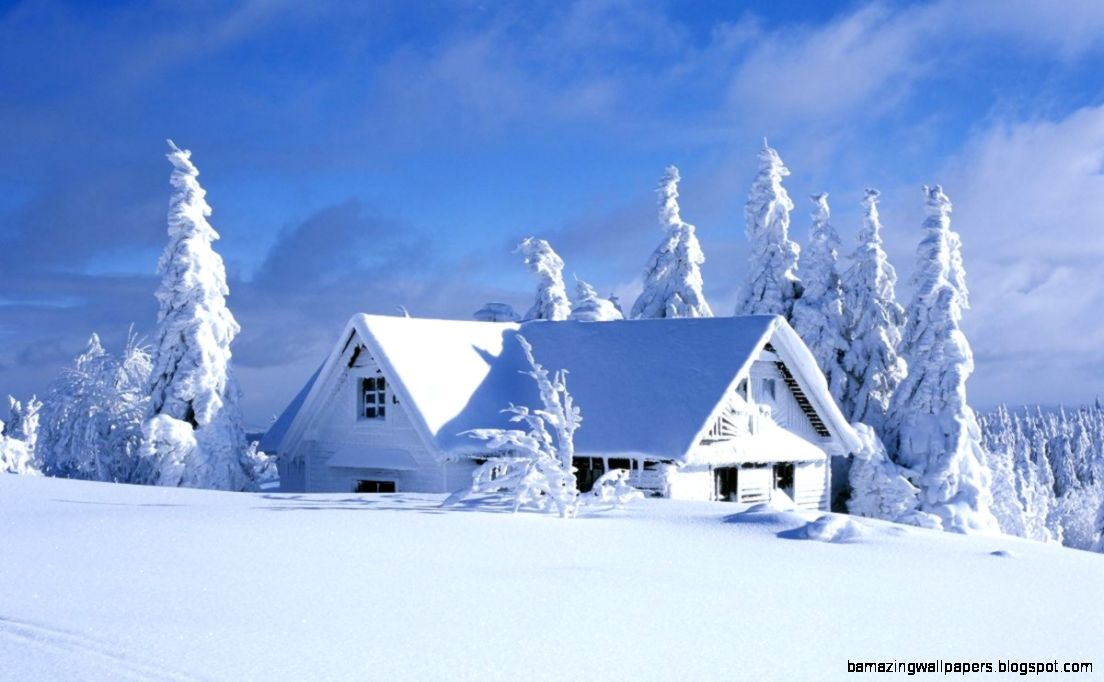 Beautiful Snow Nature Wallpapers Amazing Wallpapers