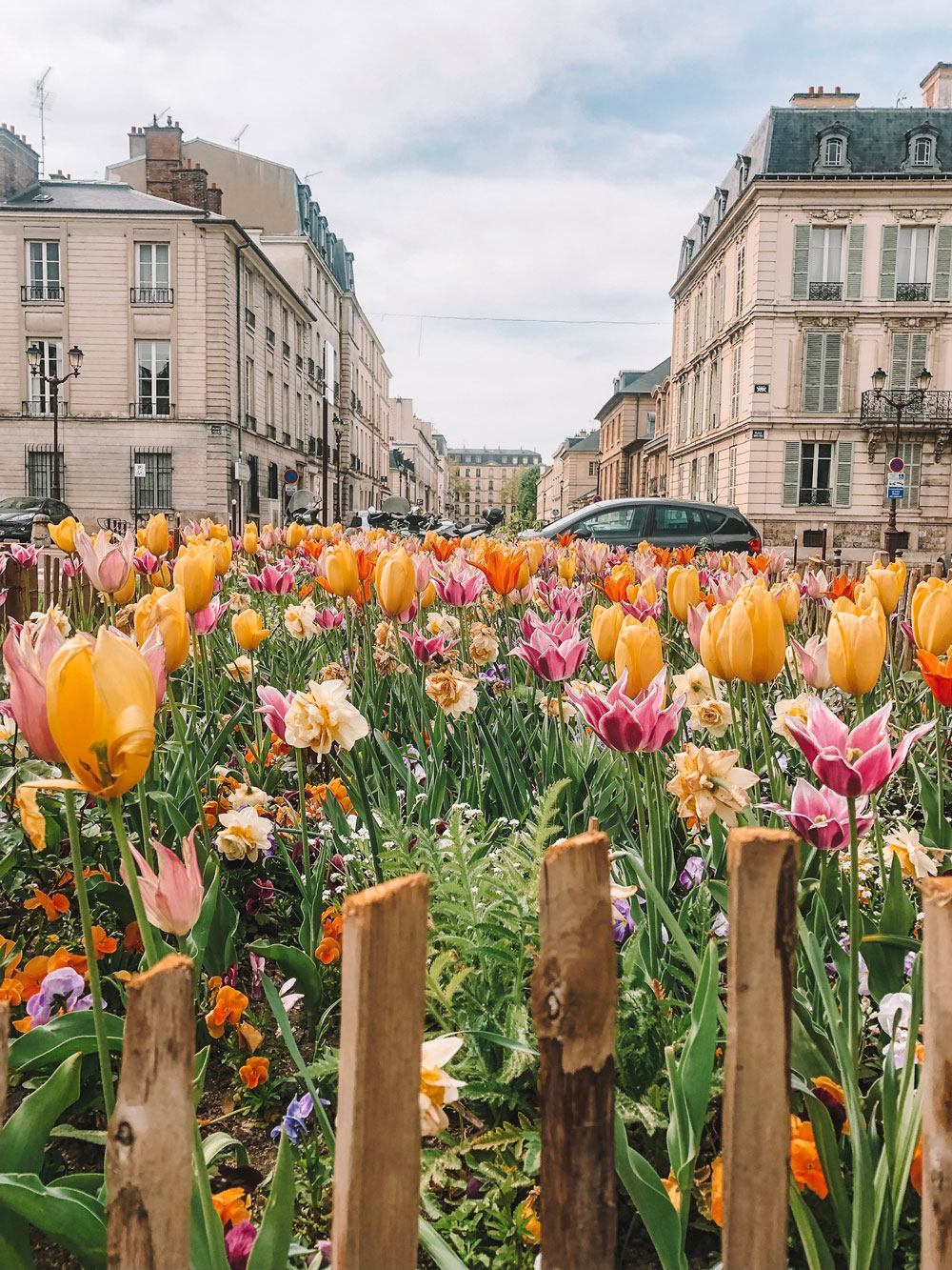April in Paris with tulips