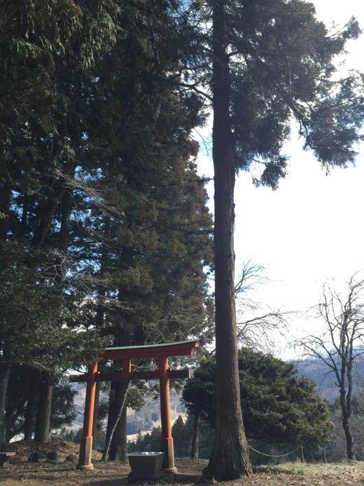 岩櫃神社の鳥居