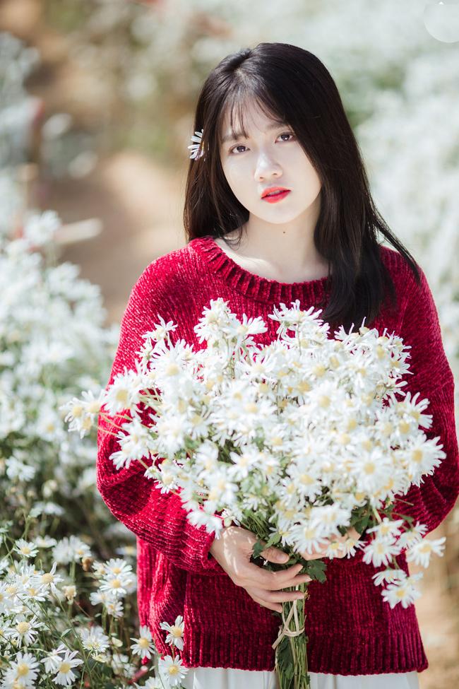 Ngắm hot girl Sài thành đẹp như tranh vẽ bên cúc họa mi Hà Nội