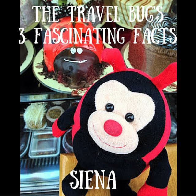 The travel Bug - SIena