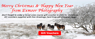 http://mailchi.mp/d1be95405f99/exmoor-photography-course-news-letter-christmas-2017