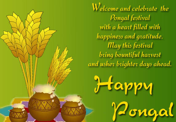Pongal Greeting Cards Wallpapers 2020, Happy Pongal Wishes Images