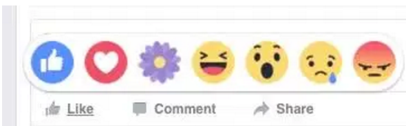 Facebook Purple Flower