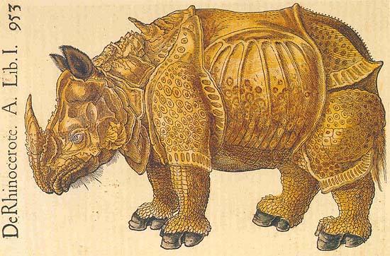 EL ANIMAL INVISIBLE: Iconografía del rinoceronte. Mafa