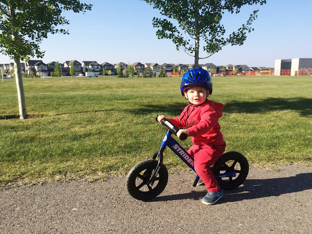 Strider Bike for Toddlers