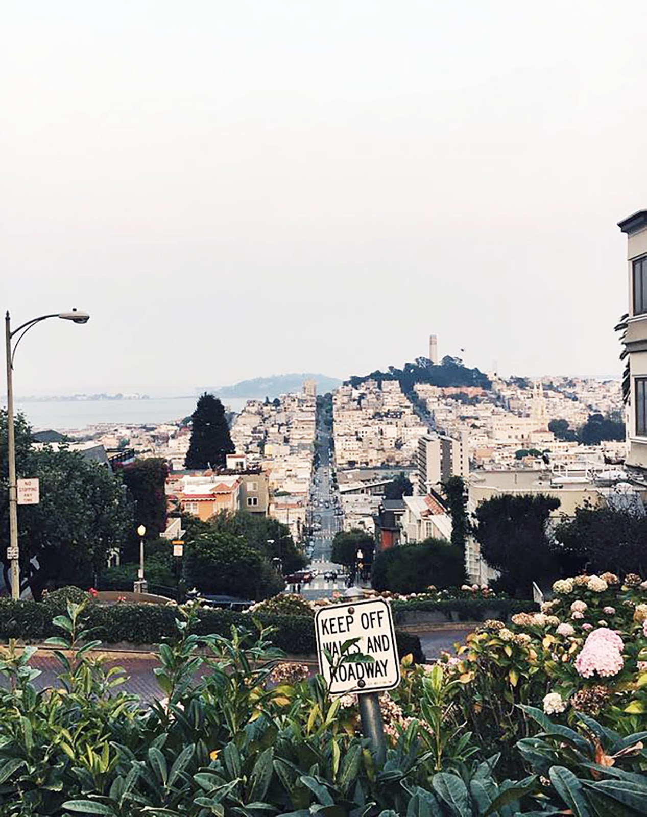 view from the top of Lombard street, San Francisco