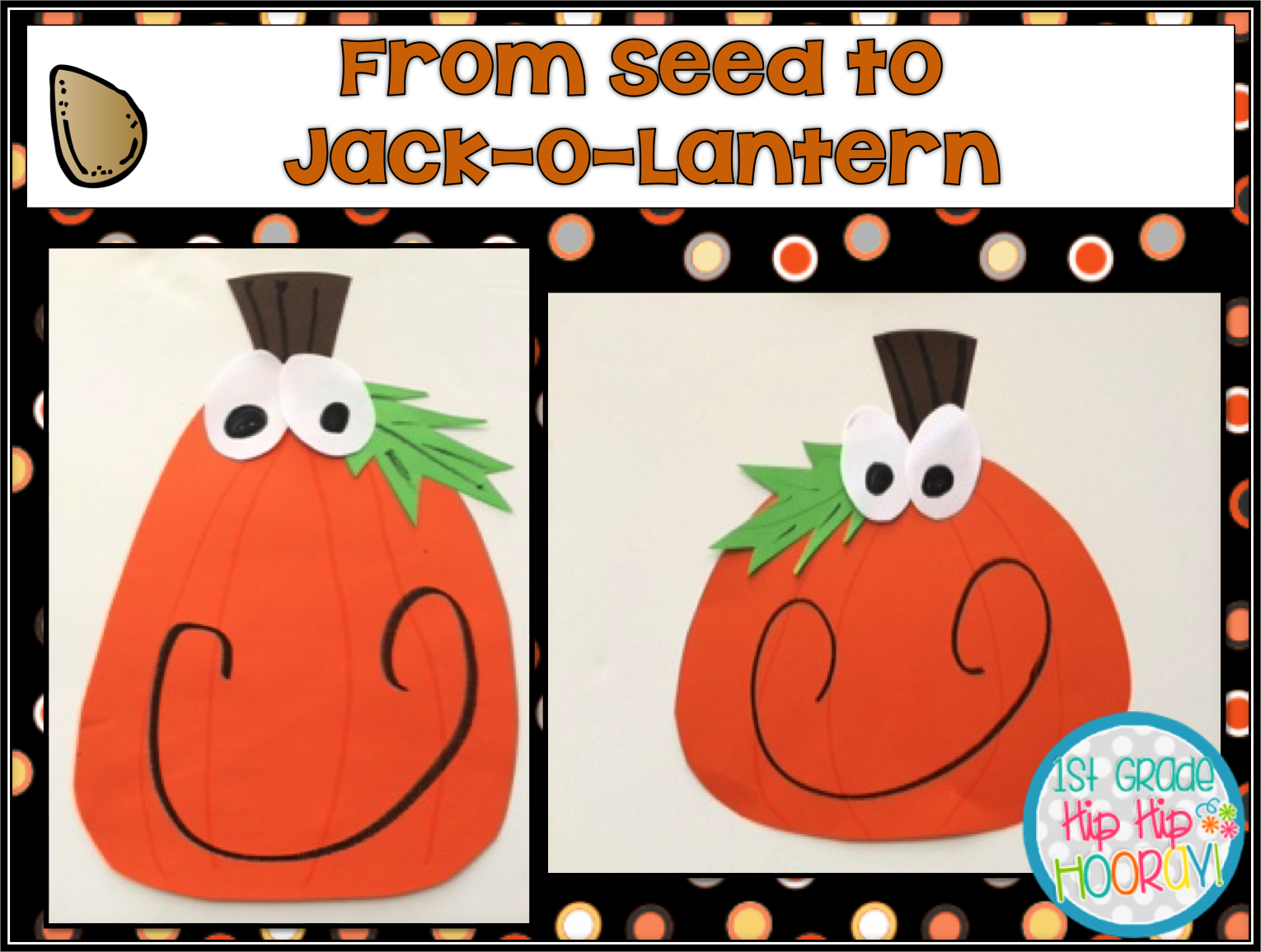 1st Grade Hip Hip Hooray From Seed To Jack O Lantern