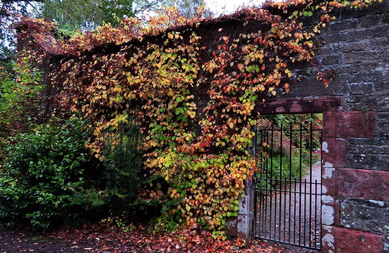 Alex and Bob`s Blue Sky Scotland: The Secret Garden. An Autumn ...