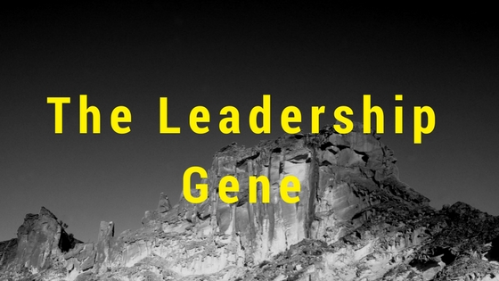 The Leadership Gene by Mr Great Inspiration