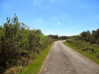 Bike Riding at Shark Valley at the Everglades National Park