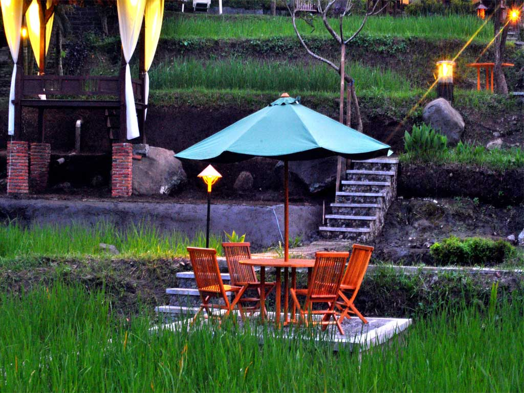 Paddy City Resort Resor Bernuansa Pedesaan Di Jantung Kota Malang