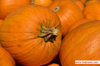 Pumpkin- पम्पकिन कद्दू