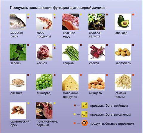 Щитовидная железа - правильное питание