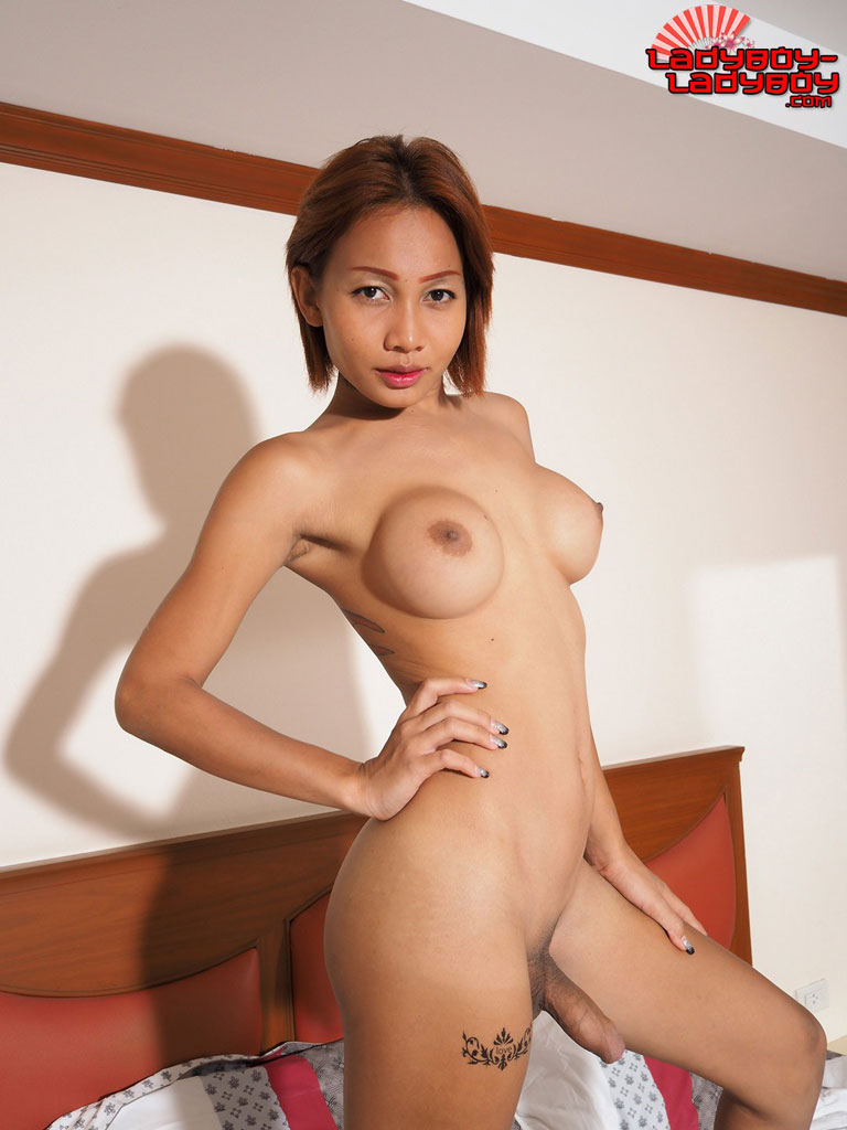 hot ladyboy asian ladyboy