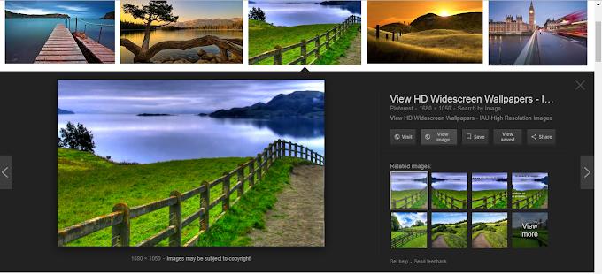Cara Memunculkan Fitur View Image di Google